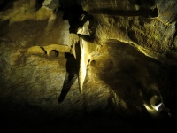 W Sali Masaryka