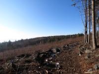 Rozległe wylesienie pod Ślężą