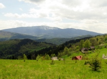 Babia Góra spod Kiczory
