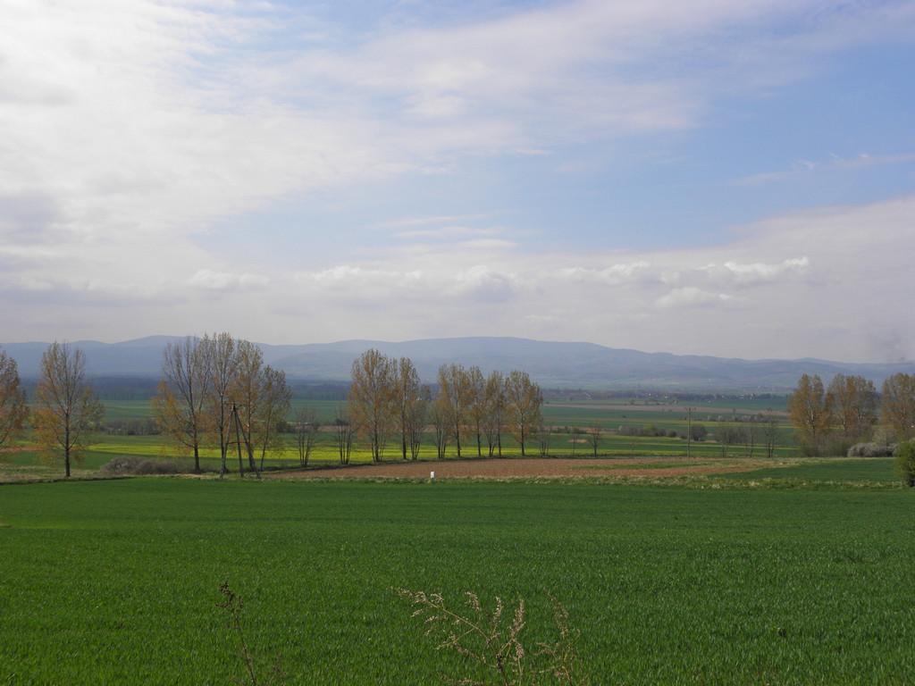 Góry Sowie - widok znad Kiełczyna