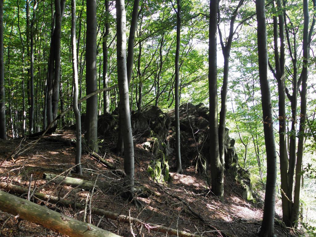 Przełęcz Jawornicka