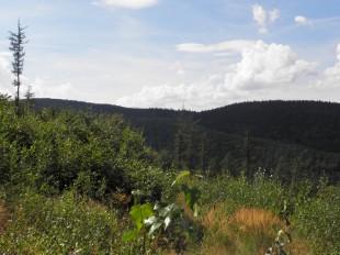 Panorama spod Kikoła - Trzeboń