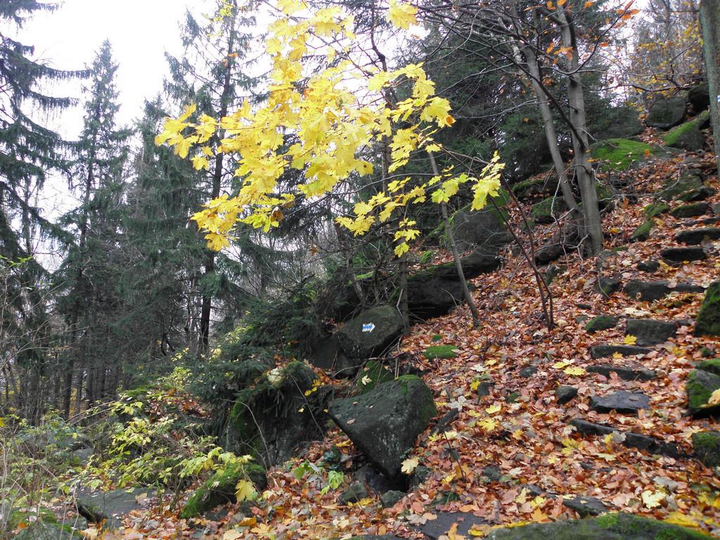 Pod jesiennymi Olbrzymkami