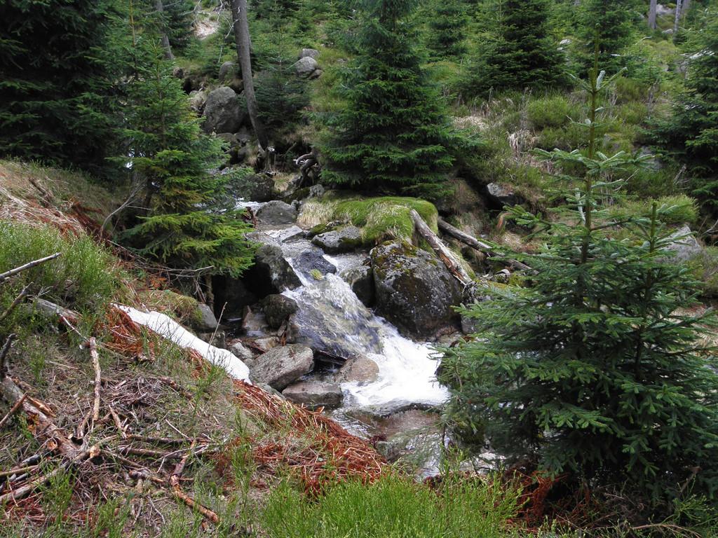 Cascades on the Wrzosowka stream