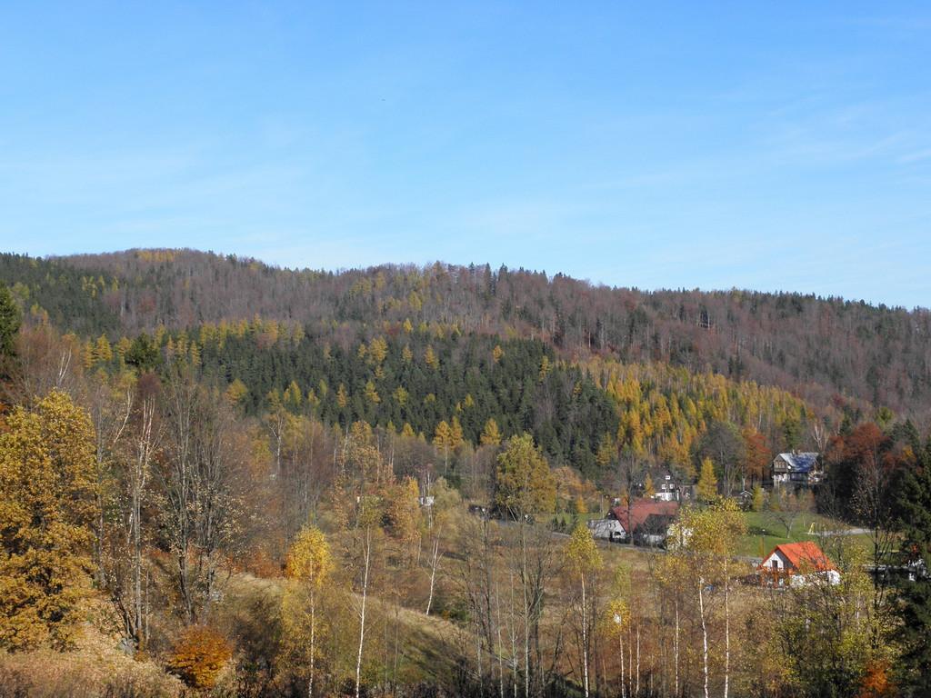 Grzybowiec - view from slopes of Śląski Grzbiet