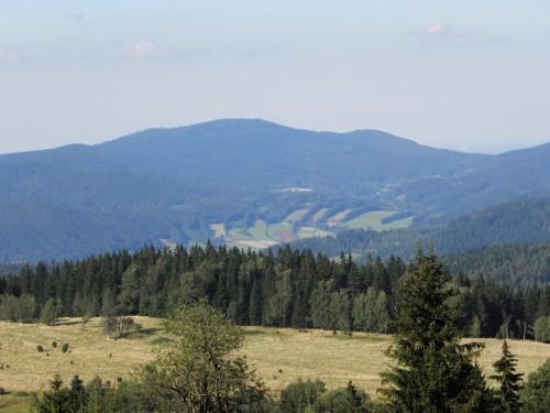 Jawornik Wielki - widok z Puchaczówki