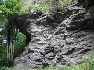 W dolinie Skalnego Potoku