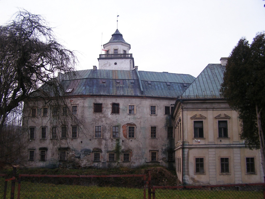 Castle in Miedzylesie