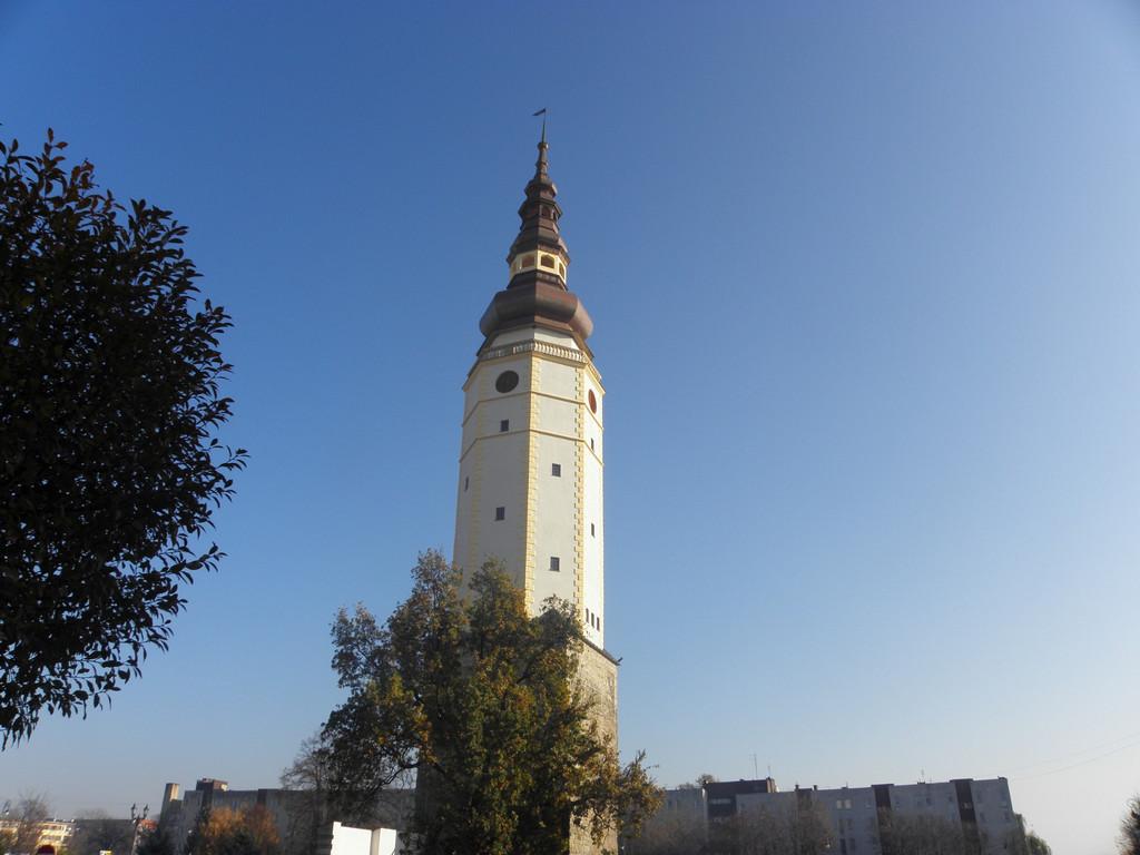 Strzelin - Town hall tower