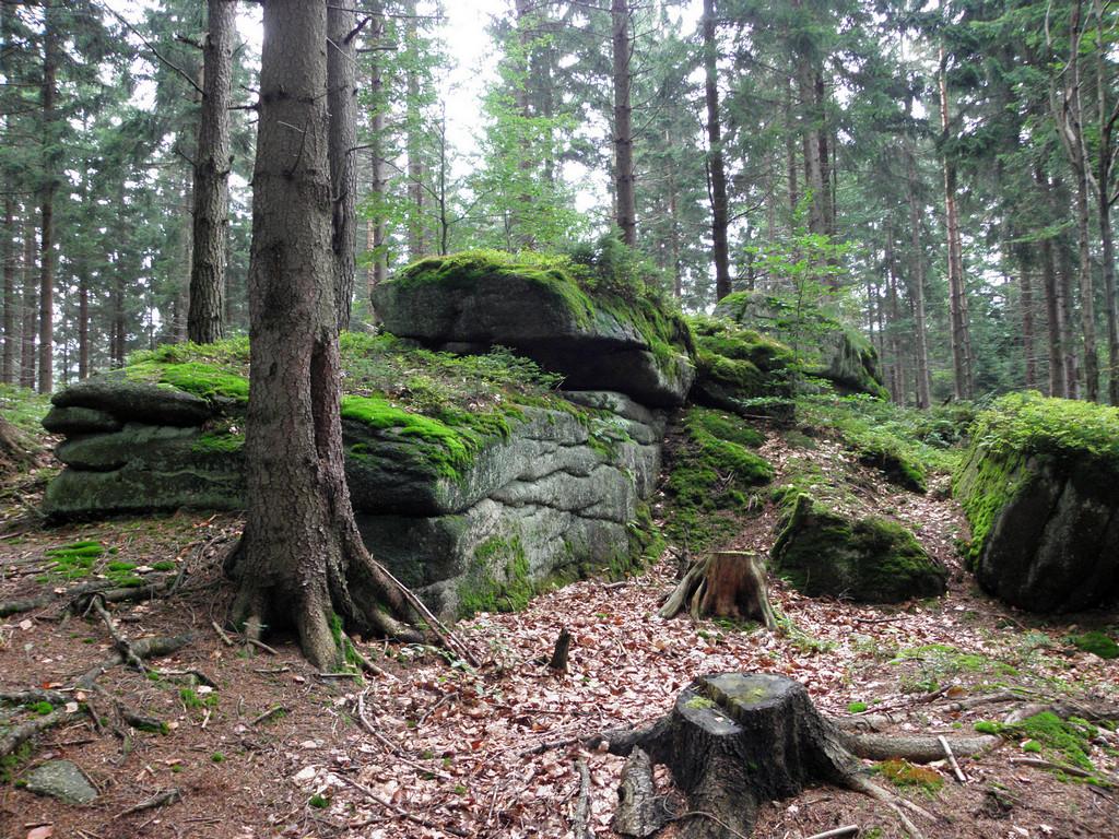 Skałki nad Kamienną