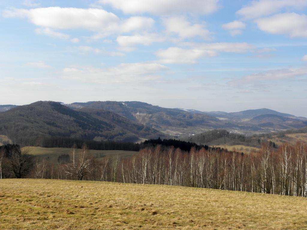 Łąki w rejonie Radzimowic