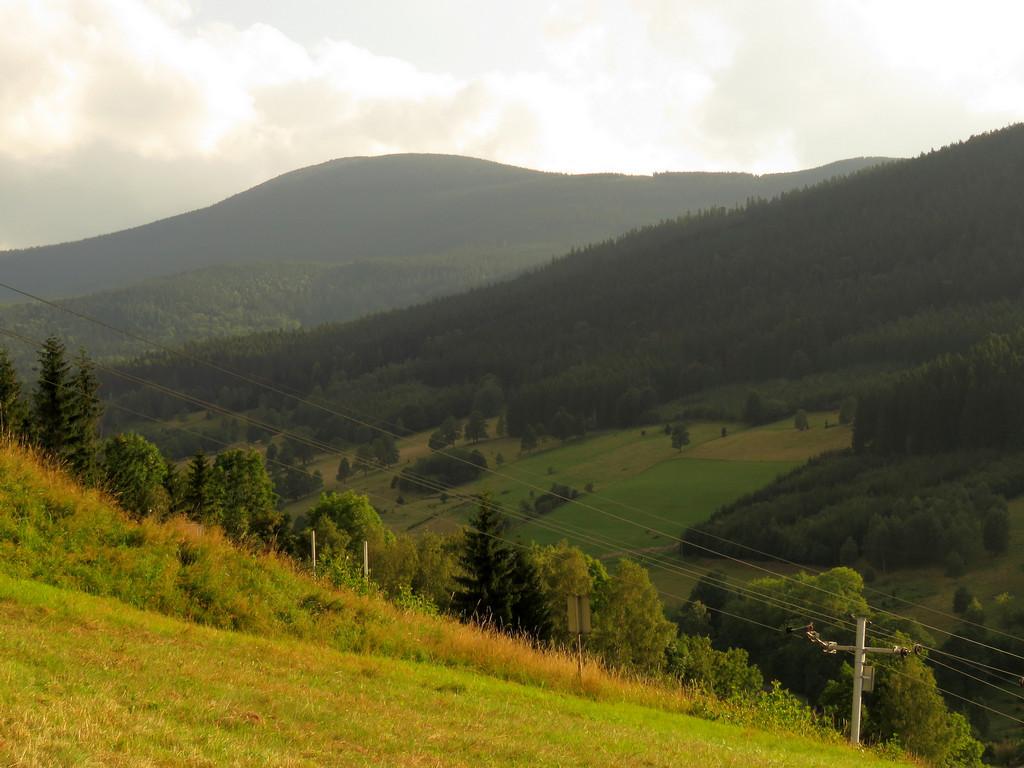 Góra Oliwna