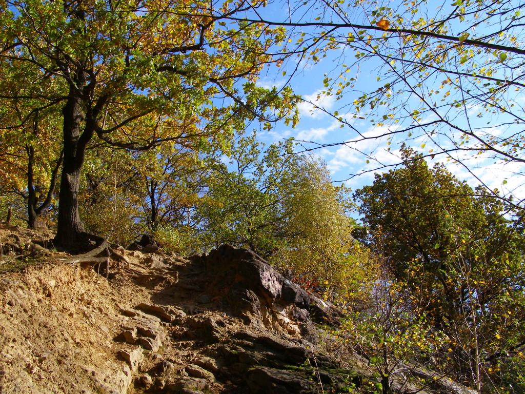 Old quarry under Parkowa