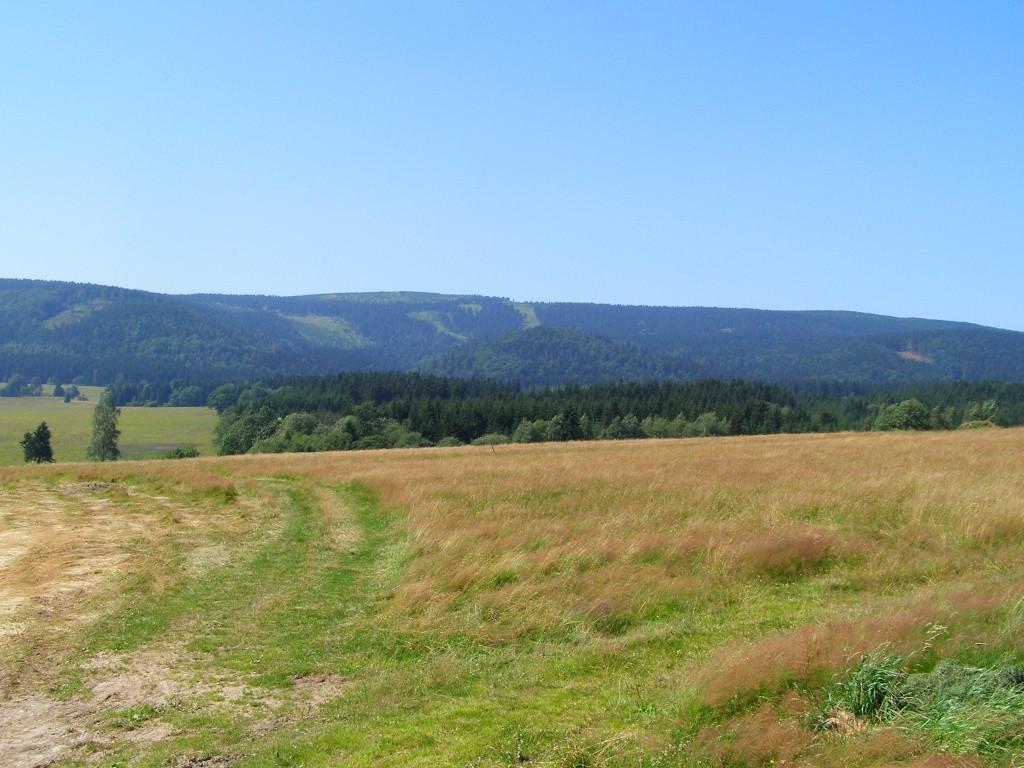 Orlickie Mts. from Lasowka