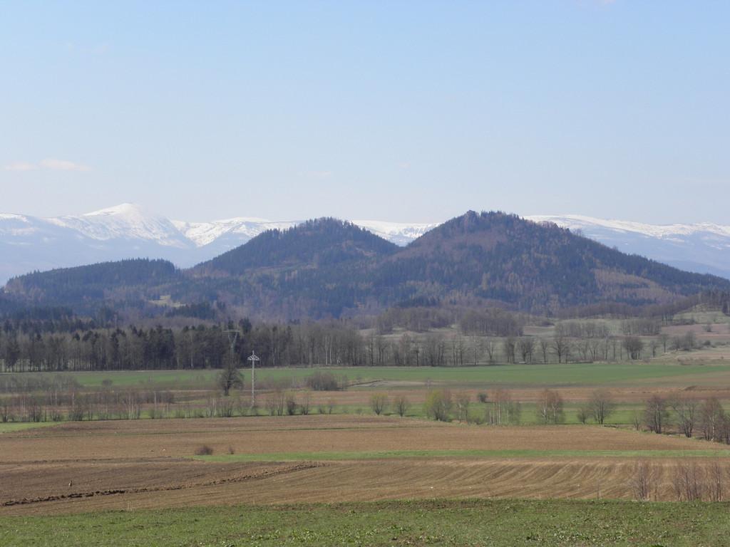 Close-up of Góry Sokole
