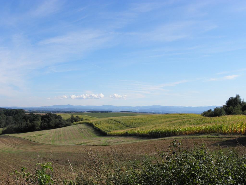 Widok na Góry Opawskie i Wysoki Jesenik z okolic Lipnik