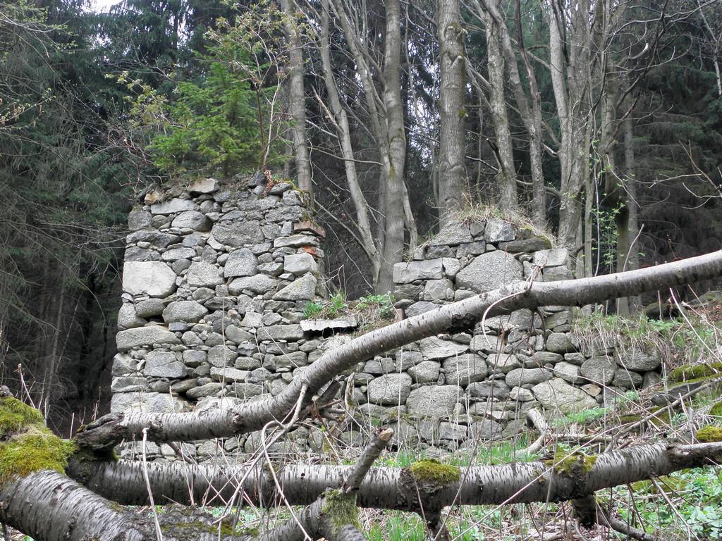Ruiny pod Ptasznikiem