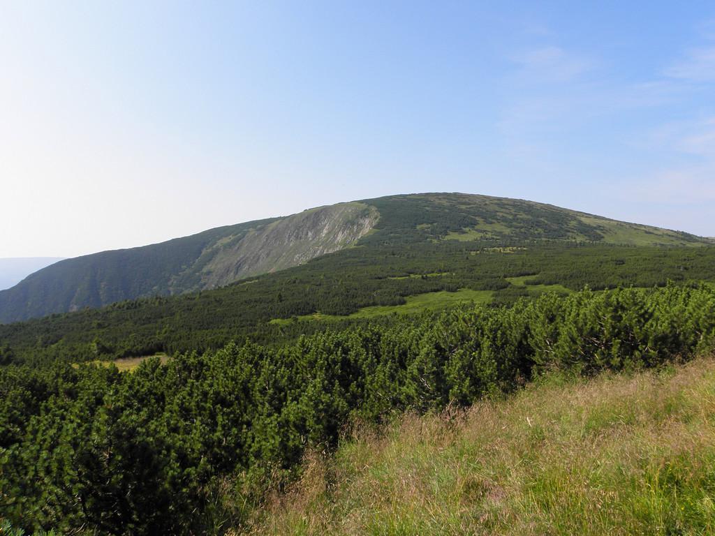 Źródlana Góra