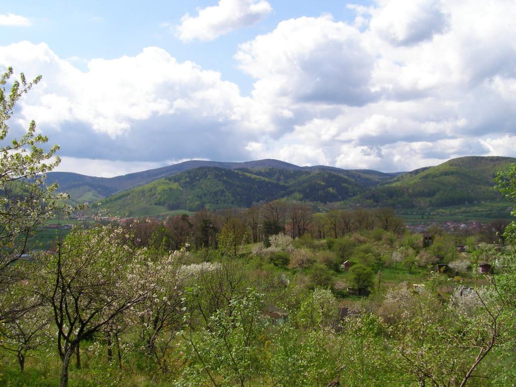 Kalenica (964 m) from Bielawa