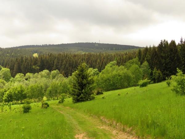 Łąki nad Potoczkiem