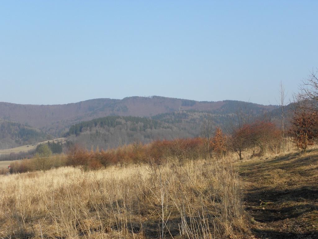 Kłodzka Góra ze zboczy Kostrej