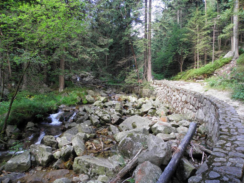 W dolinie Łomniczki